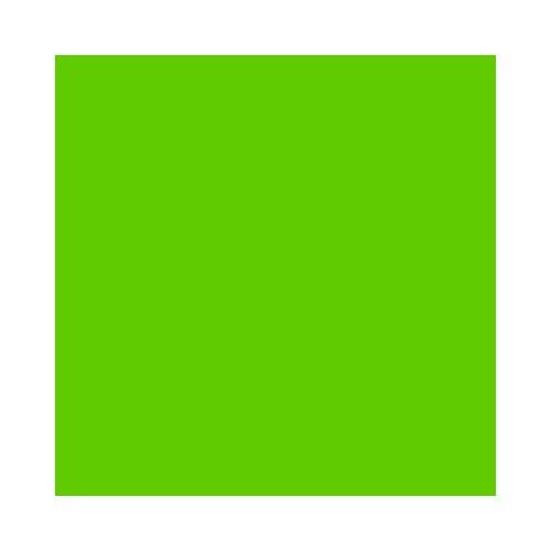 Rosco Fluorescent Green 3,79 L
